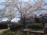 写真 12-04-18 12 34 25