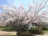 写真 12-04-18 12 54 26