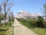 写真 12-04-18 12 55 01