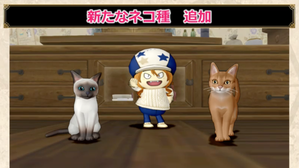 【ドラクエ10】メレアーデの部屋の「ネコのついてクン」がクッソ可愛いのサムネイル画像