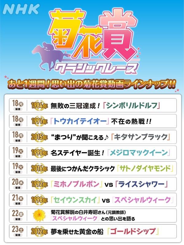 【朗報】NHKさん、菊花賞特集でゴリゴリにウマ娘に乗っかってしまう