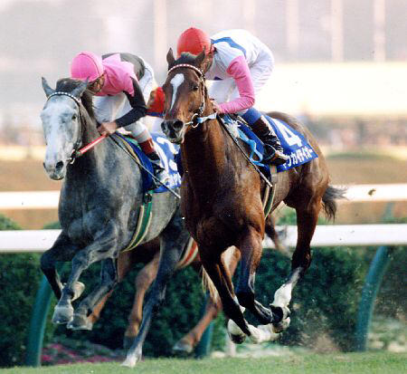 【ウマ娘】93年有馬記念の「トウカイテイオー」と「ビワハヤヒデ」をアニメ化するとこうなるのサムネイル画像