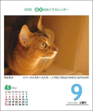猫友日めくりカレンダー ラムセス♪