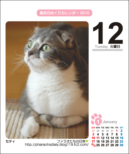 ねこともカレンダー2010 セティさん♪