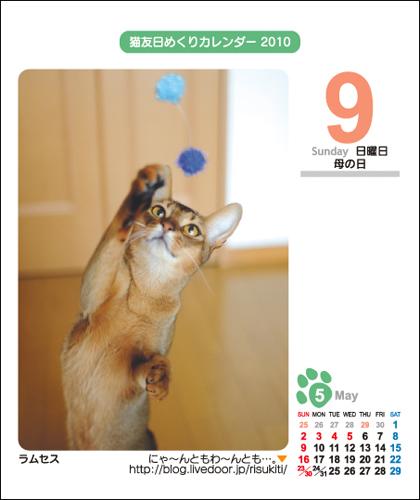 ねこともカレンダー2010 ラムセスさん♪