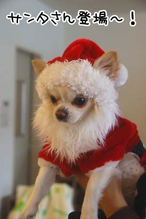 クリスマスパーティー ちーサンタ
