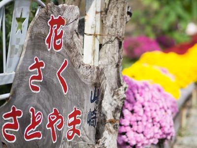 花咲く里山1