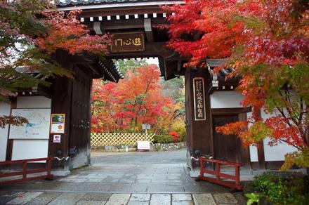 京都の秋・永観堂