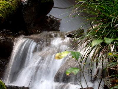 千条の滝4