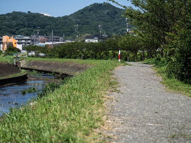 散歩道03