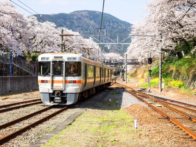 松田・山北16