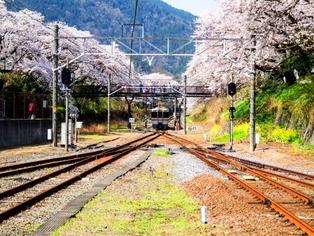 松田・山北12