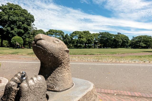 平塚総合公園1