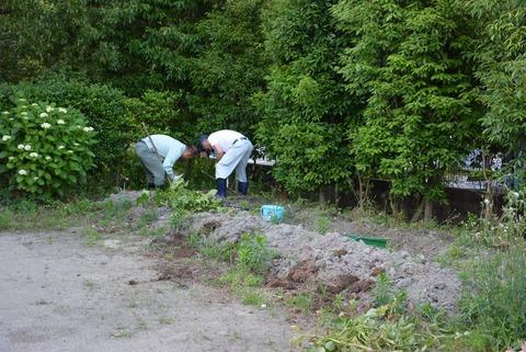 ジャガイモの収穫2