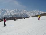 広い山頂ゲレンデ