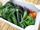 いただいた沢山のお野菜♪