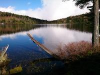 白駒池の静寂