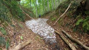 登山道には残雪とぬかるみが少しあります