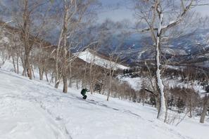 ヒヨドリから栂池スキー場方面へ下山