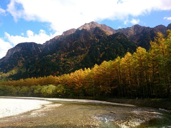 カラマツの黄葉が見事だった上高地