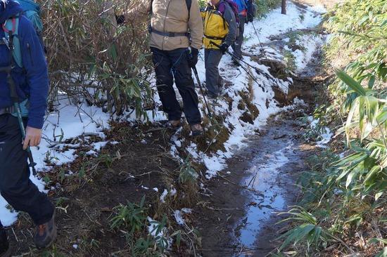 登山道にはぬかるみや段差があります