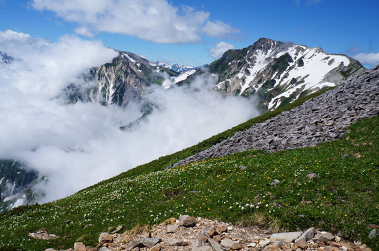 稜線から望む白馬岳
