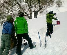 積雪断面チェックのため雪を掘る