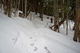 本沢温泉からの登り返しは軽いラッセル