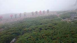 杓子岳へ向かう登山道