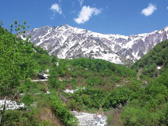白馬岳と新緑
