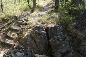 ときどき岩場が混じる登山道