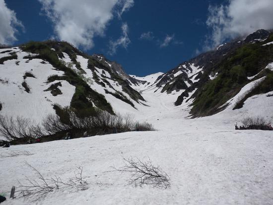 白馬尻から大雪渓を見通す