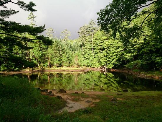 神秘的なみどり池