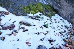 ダム堰堤近くの日陰では雪が!標高約1,300m