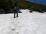 途中に残雪もあります