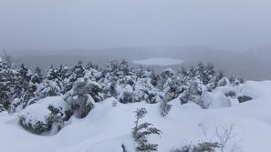 高見石からみた白駒池