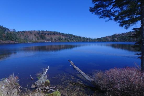 青空の色が映る白駒池(しらこまいけ)