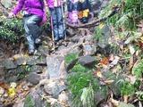 雨飾温泉への下山路