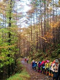 秋めいた登山道を進む