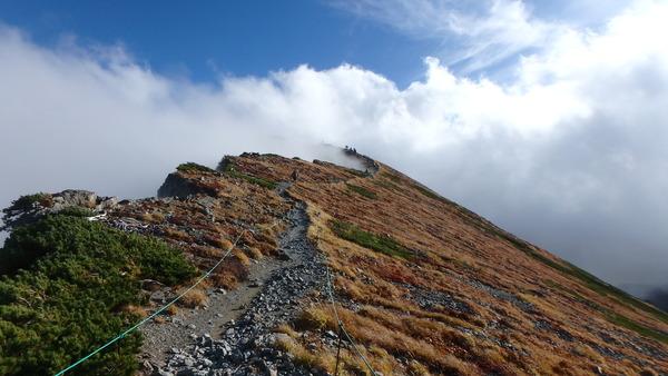 白馬岳の山頂が見えてきた!