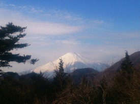 くぬぎ山山頂からの富士山♪