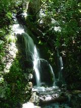 涼しげな小さな滝