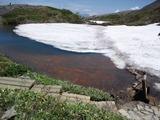 7割が雪に覆われていた八方池