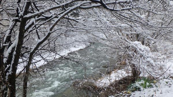 姫川の流れと雪化粧