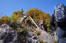ハシゴの箇所は、登りと下りで譲り合って進みあって