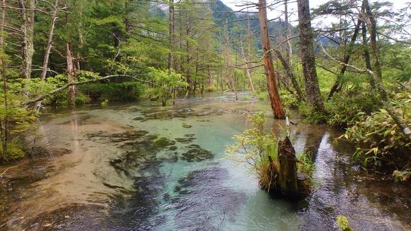 梓川沿いの水の美しさを愛でながら