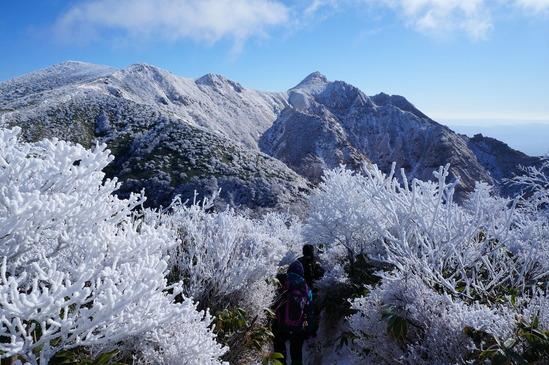 美しく雪化粧した朝日岳