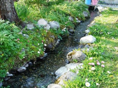 春の小川♪
