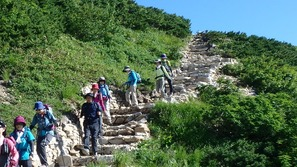 登山道はとても良く整備されています