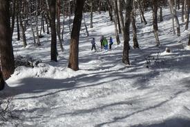 グループに分かれ、林の中でビーコン探し練習